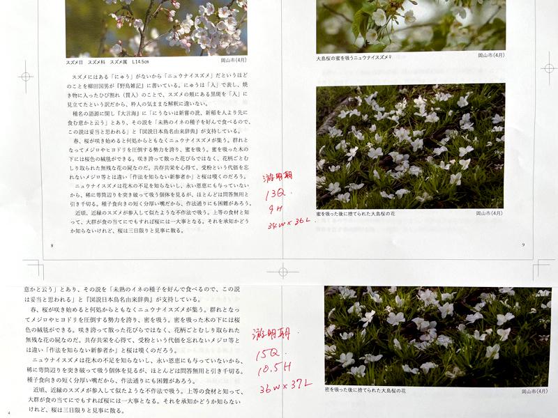 判型を検討。写真や文字が大きく読みやすいB5判、本を手に取ったとき納まりがよいA5判か…