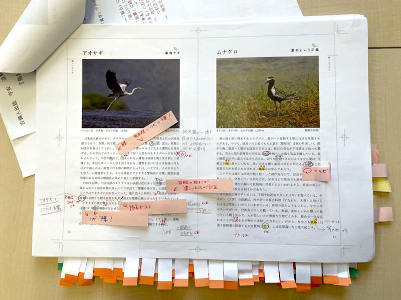 付箋がたくさん付いています。著者の意向とすり合わせてさらに修正を重ねます。